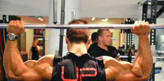 Back and Biceps Workouts